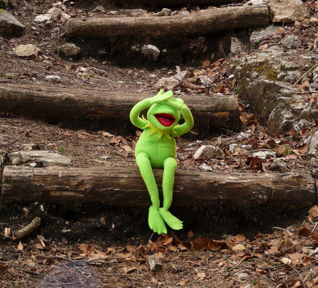 Kermit der Frosch sitzt auf einem Ast und hält sich die Arme vor den Kopf
